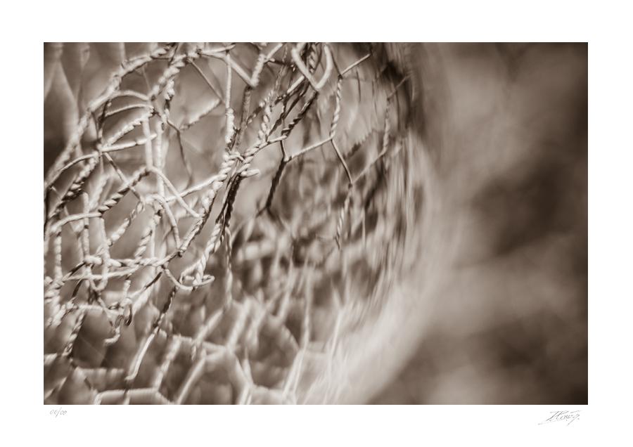 SHOP-Vintage-Glass-900-David-Arraez